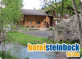 Hotel_Steinbock.jpg
