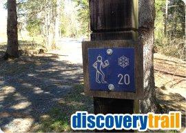discovery_trail.jpg