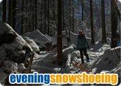evening_snowshoeing.jpg
