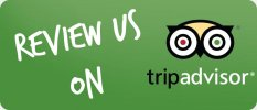 Review KISC on Trip Advisor
