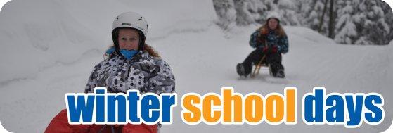 winter_school_days_button.jpg
